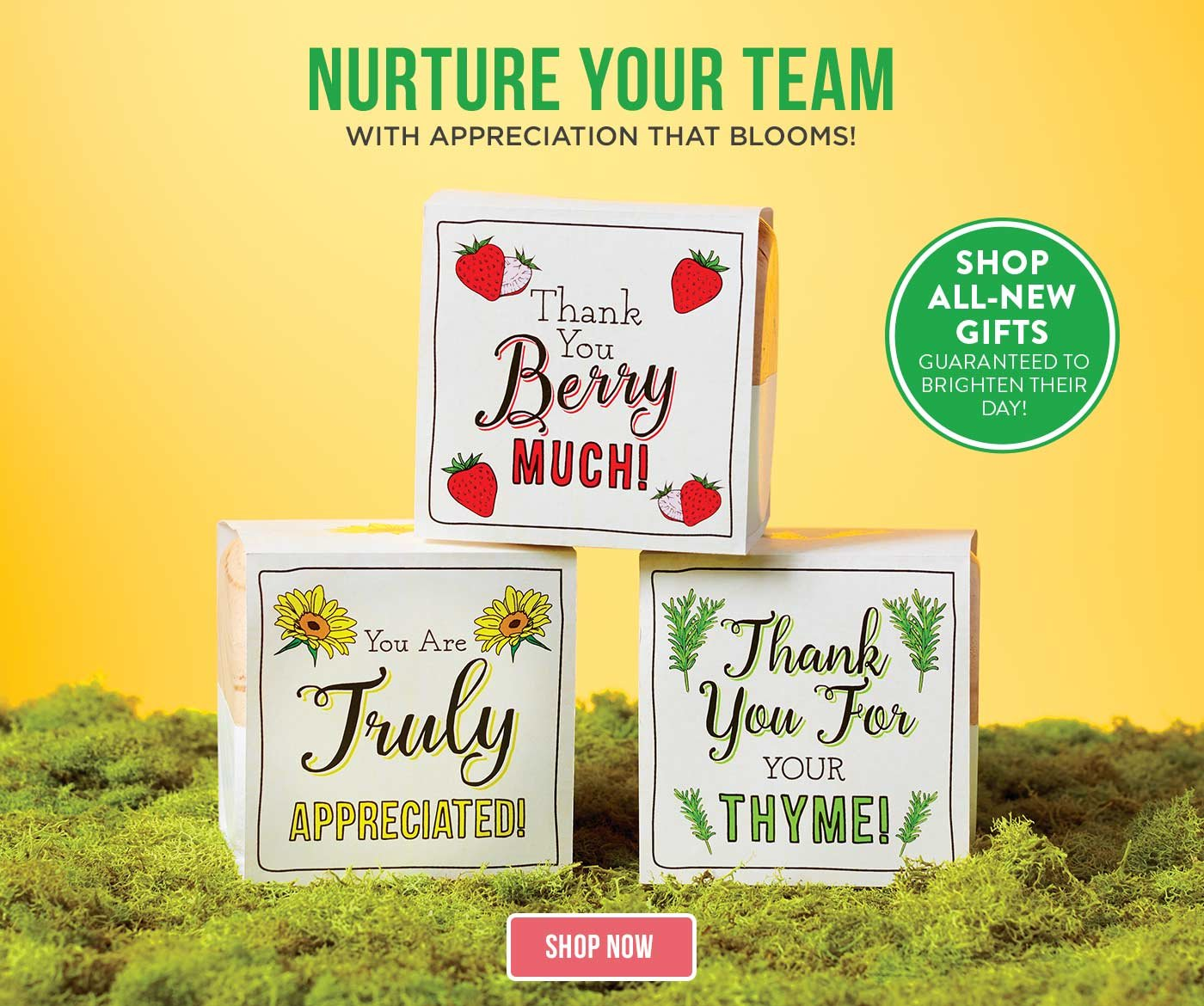Employee Recognition Gifts And Custom Awards Baudville Com